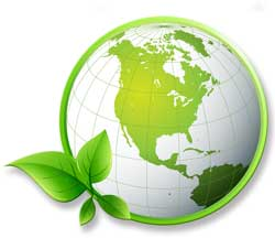 Sustainable Development, ISO 14001, and Life Cycle Management Consulting